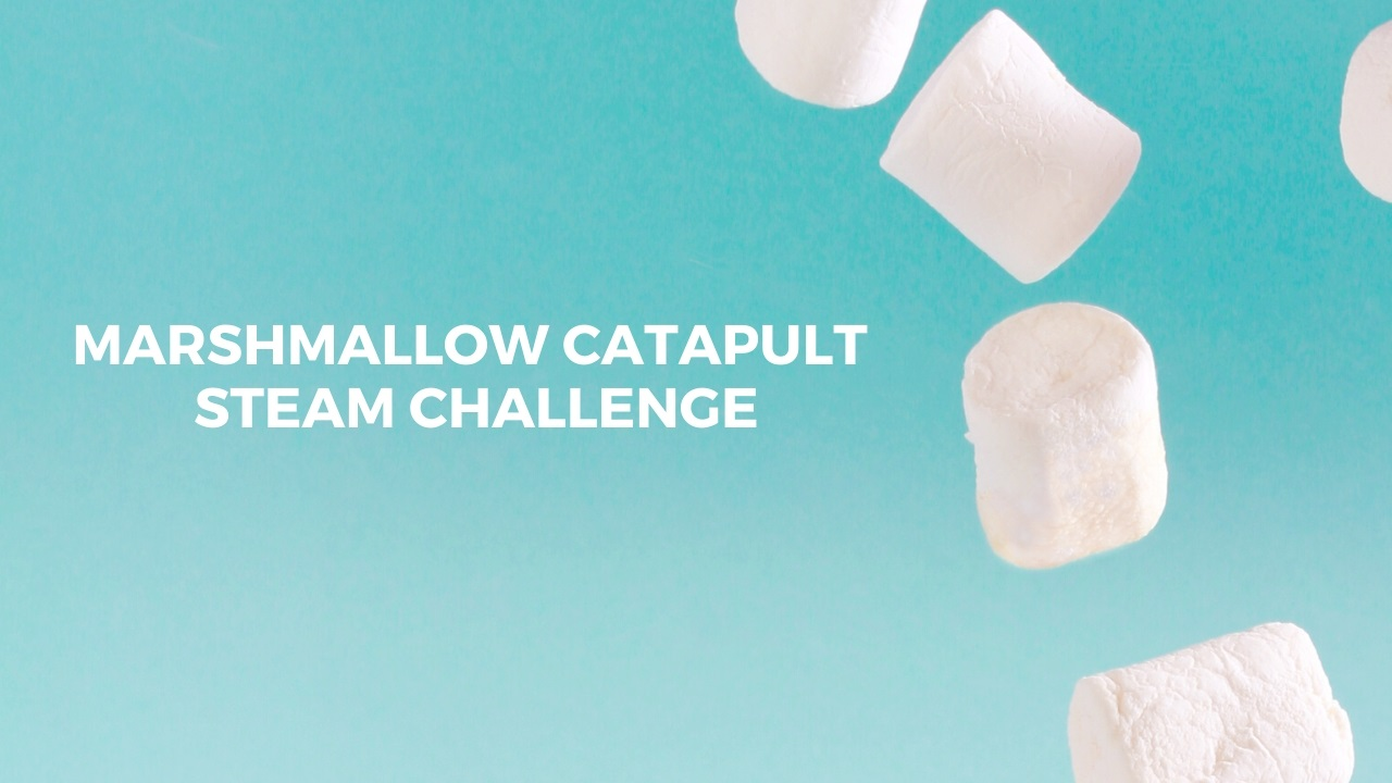 Marshmallow Catapult STEAM Challenge