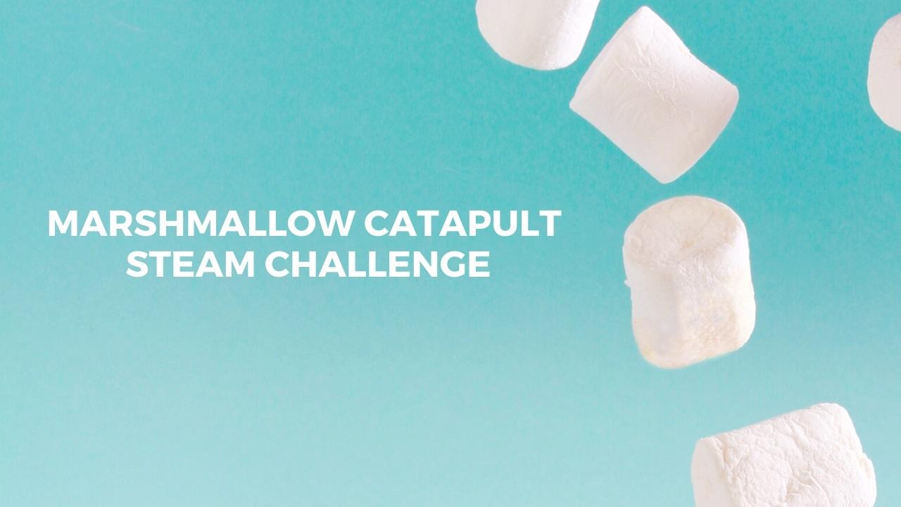 Marshmallow Catapult STEAM Challenge